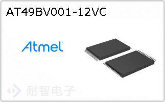 AT49BV001-12VC