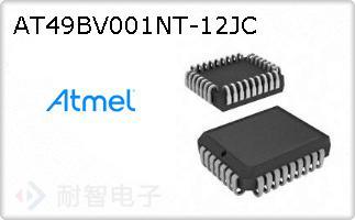 AT49BV001NT-12JC