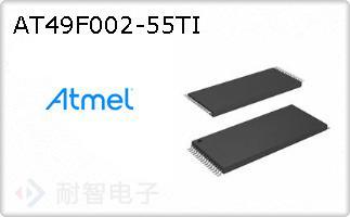 AT49F002-55TI
