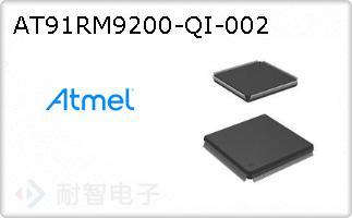 AT91RM9200-QI-002