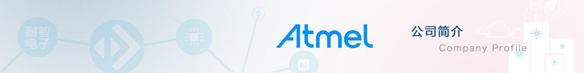 Atmel公司介绍
