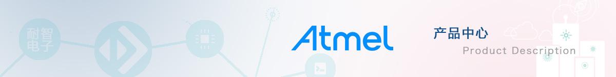 Atmel公司具有代表性的产品